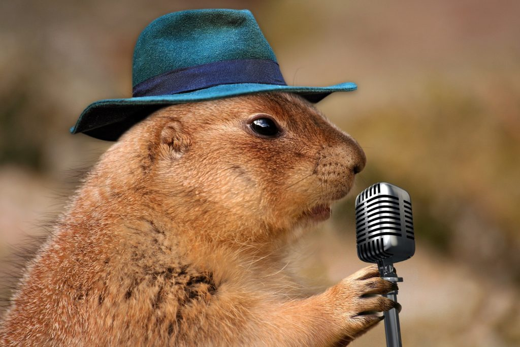 Prairie Dog Announcer